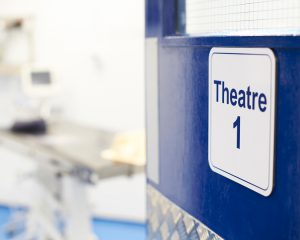 Veterinary theatre